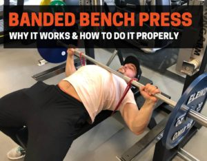 Do bands help with bench press