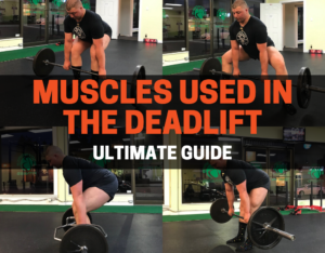 muscles used in the deadlift