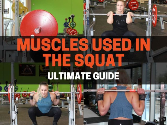 Muscles Used In The Squat (Ultimate Guide)