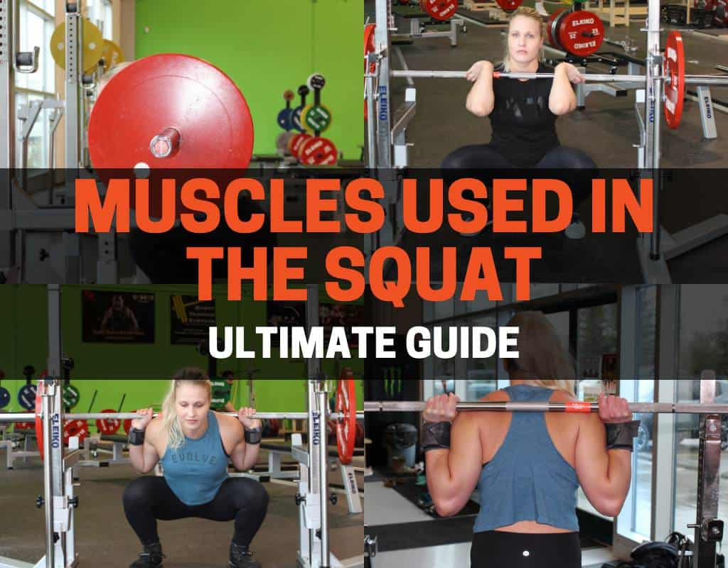 Phenomenal Muscles Used In The Squat Complete Guide Lamtechconsult Wood Chair Design Ideas Lamtechconsultcom