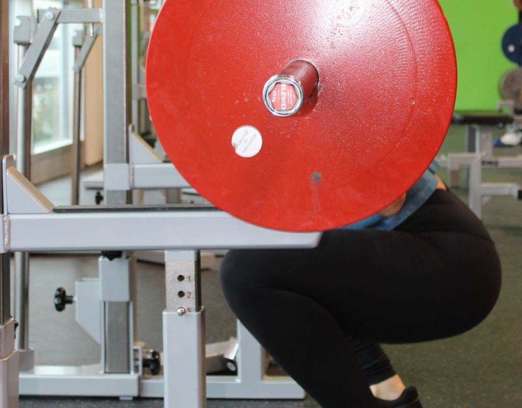 pause back squat muscles