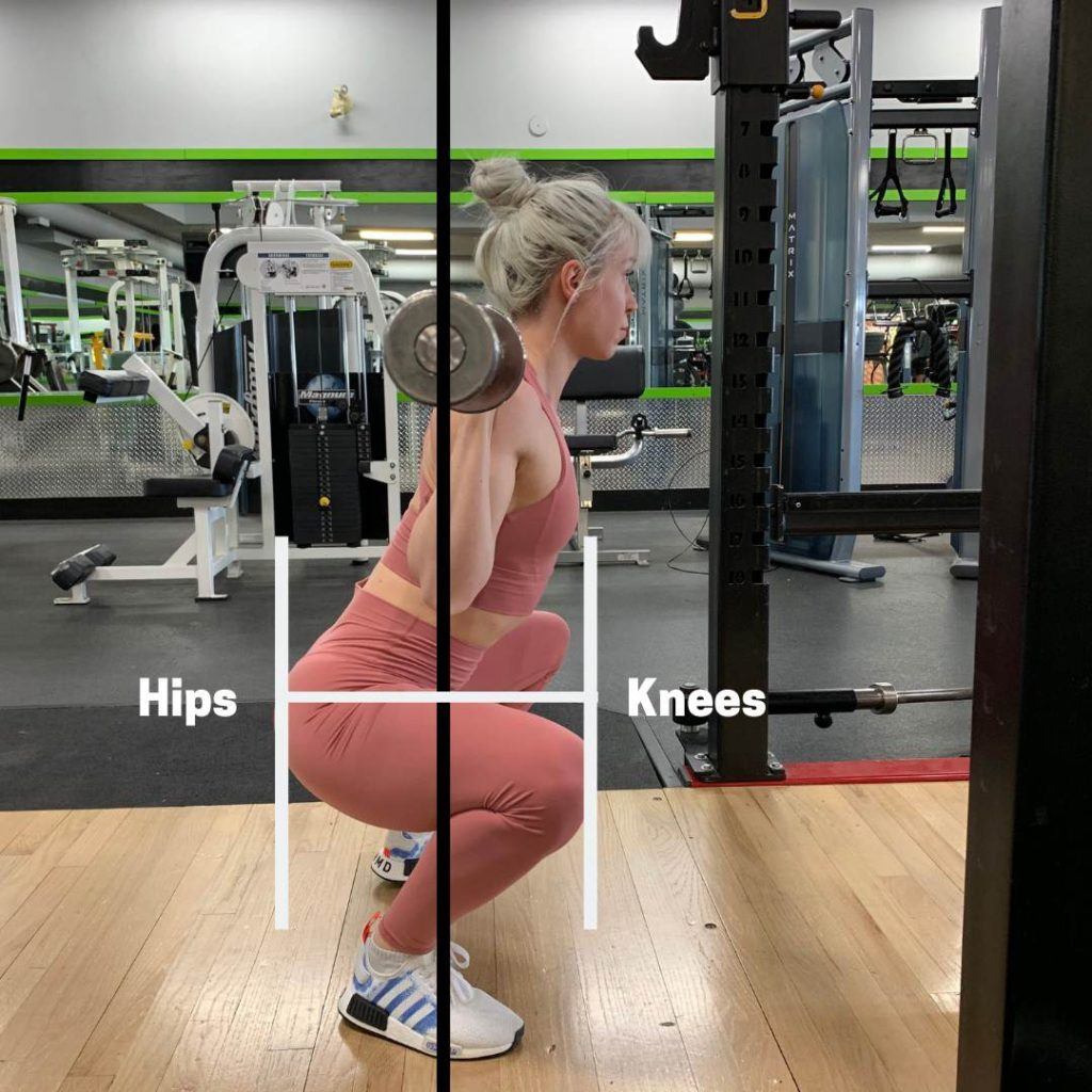 Squat muscles based on hip and knee angle