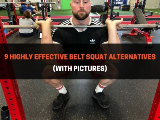9 Highly Effective Belt Squat Alternatives (With Pictures)