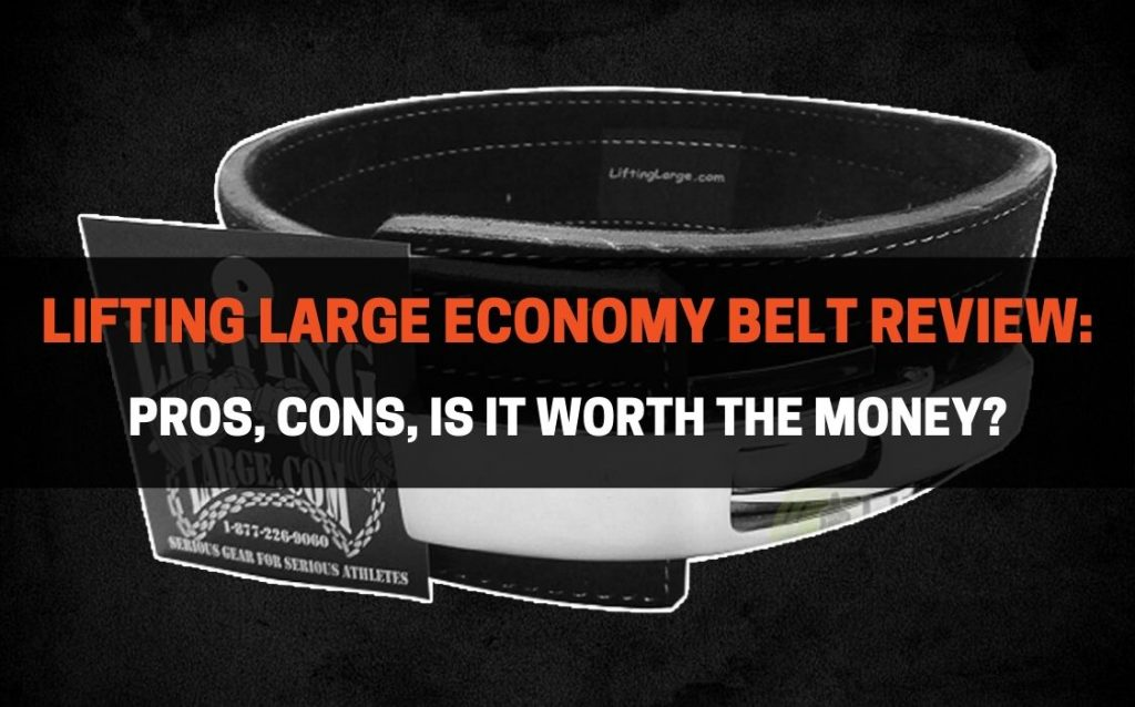 decide whether you should buy Lifting Large Economy Belt