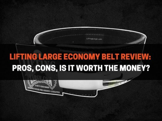 Lifting Large Economy Belt Review: Pros, Cons, Is It Worth The Money?