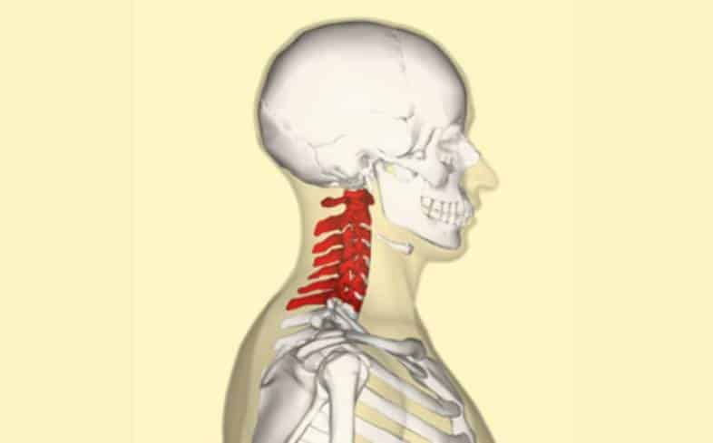 pain in the neck can be attributed to a barbell position that is too high on the back
