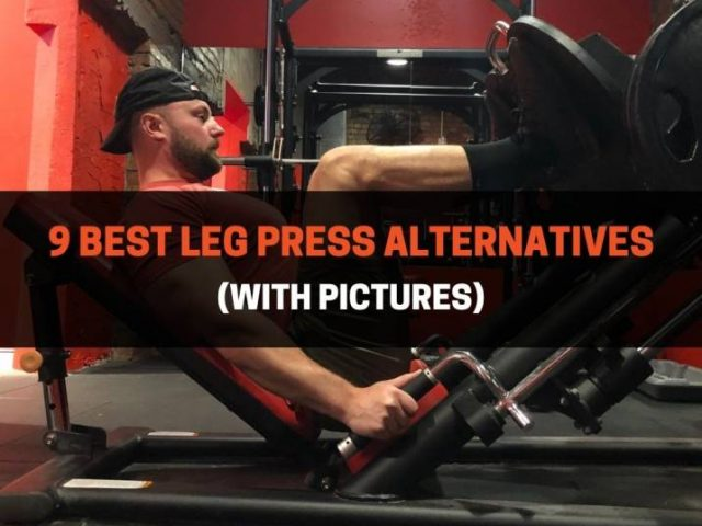 9 Best Leg Press Alternatives (With Pictures)