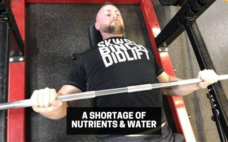 a shortage of nutrients and water can lead to premature muscular fatigue