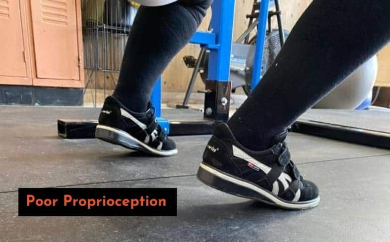 proprioception is the body's ability to perceive how we move in space, including our sense of equilibrium and balance