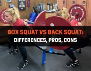 Box Squat vs Back Squat - Differences, Pros, Cons