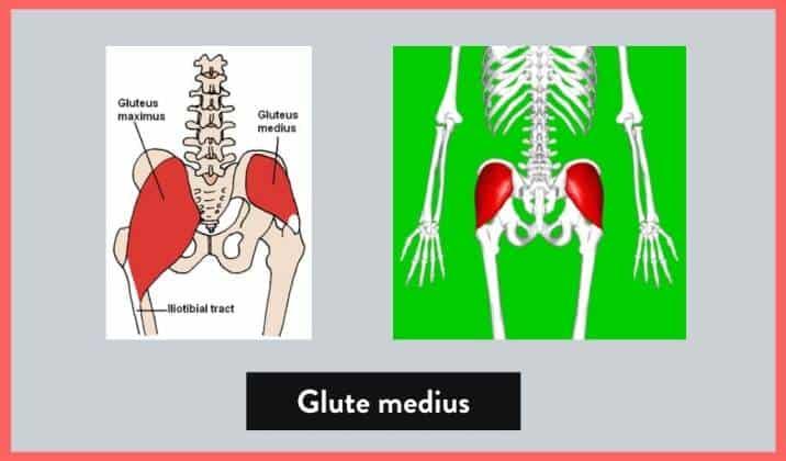another potential cause for knee valgus is having weak external hip rotators