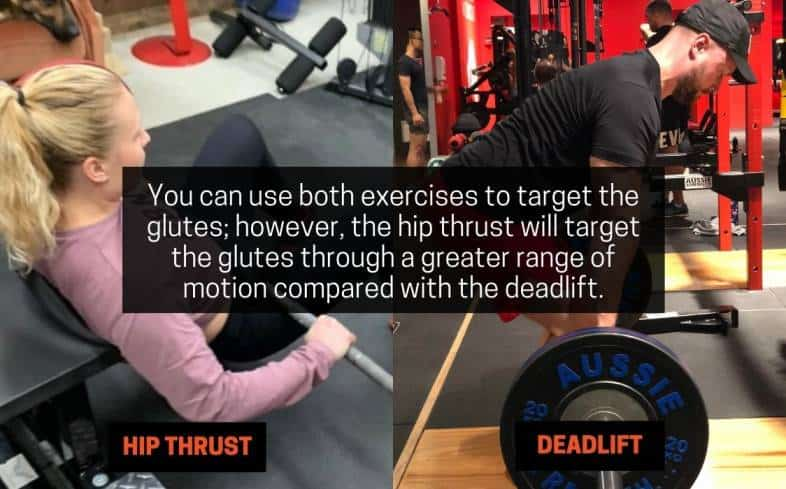 muscles worked in hip thrust versus deadlift