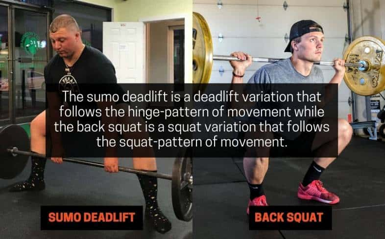 the sumo deadlift is a deadlift variation that follows the hinge-pattern of movement while the back squat is a squat variation that follows the squat-pattern of movement