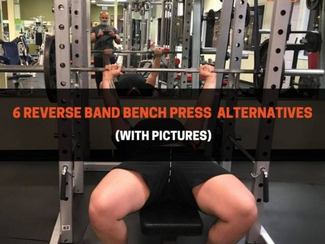 6 Reverse Band Bench Press  Alternatives (With Pictures)