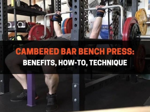 Cambered Bar Bench Press:  Benefits, How-To, Technique
