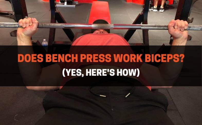 how the bench pressing is effective for bicep growth