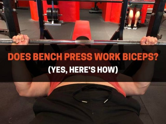 Does Bench Press Work Biceps? (Yes, Here's How)