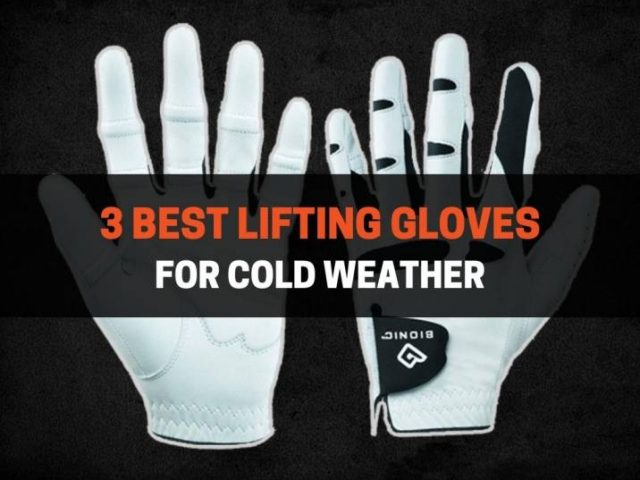 3 Best Lifting Gloves for Cold Weather (2021)