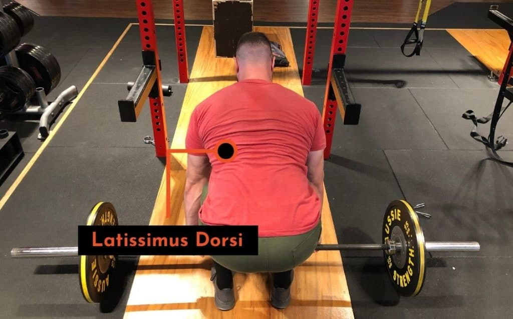the latissimus dorsi help keep the barbell on your body and prevent upper back rounding