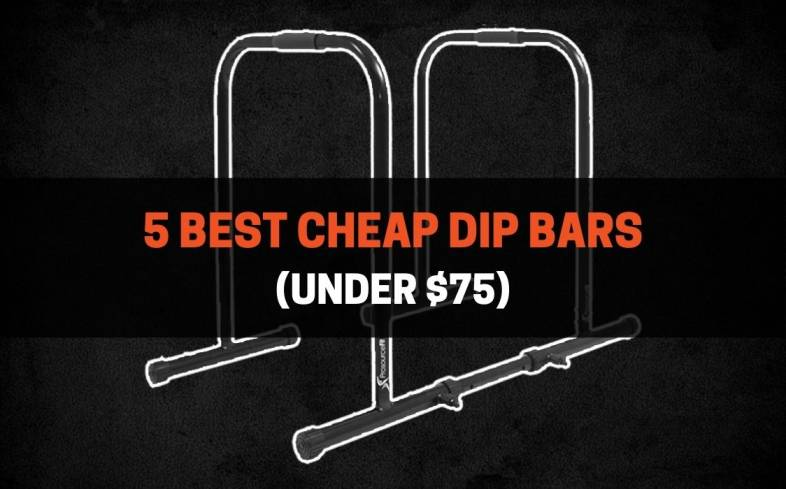 the factors to keep in mind while choosing a budget dip bar as well as other cheap options on the market