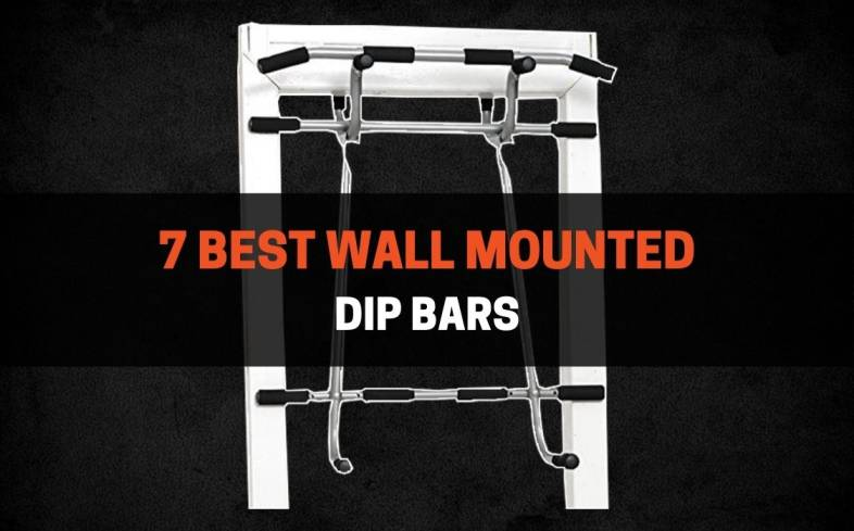 7 best wall mounted dip bars