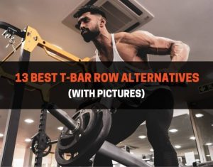 13 Best T-Bar Row Alternatives