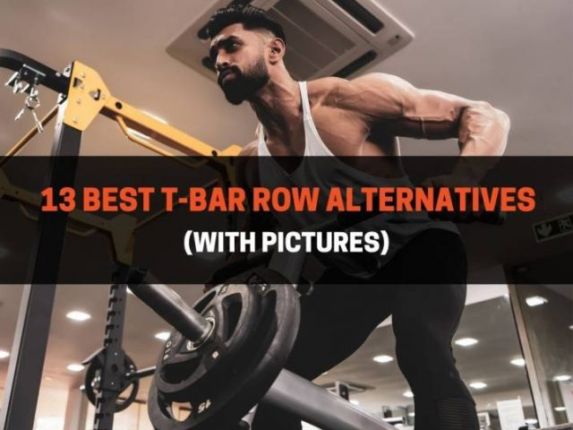 13 Best T-Bar Row Alternatives (With Pictures)