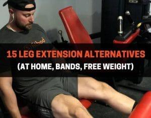 15 Leg Extension Alternatives