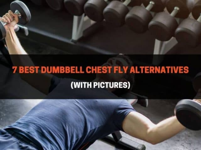7 Best Dumbbell Chest Fly Alternatives (With Pictures)