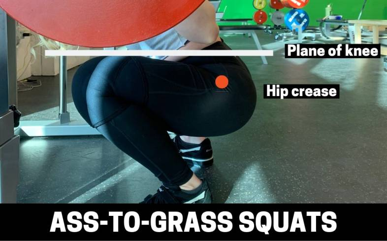 the ass to grass squat is suitable for those who have sufficient hip and ankle mobility to get to these deeper positions