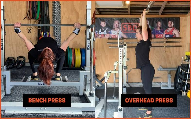 difference between a bench press and an overhead press