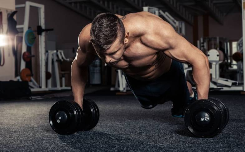dumbbell push up target predominately the triceps, which will improve pressing ability