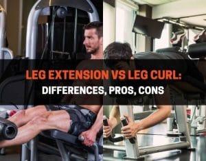 Leg Extension vs Leg Curl