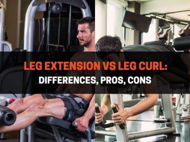 Leg Extension vs Leg Curl: Differences, Pros, Cons