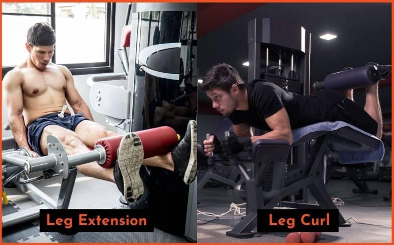 the rehab process - leg extension vs leg curl