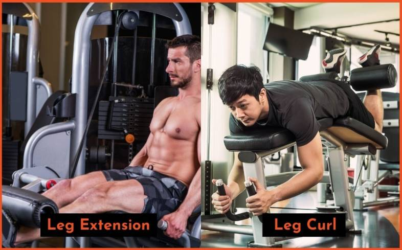 which exercise is best for you - leg extension vs leg curl