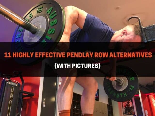 11 Highly Effective Pendlay Row Alternatives (With Pictures)