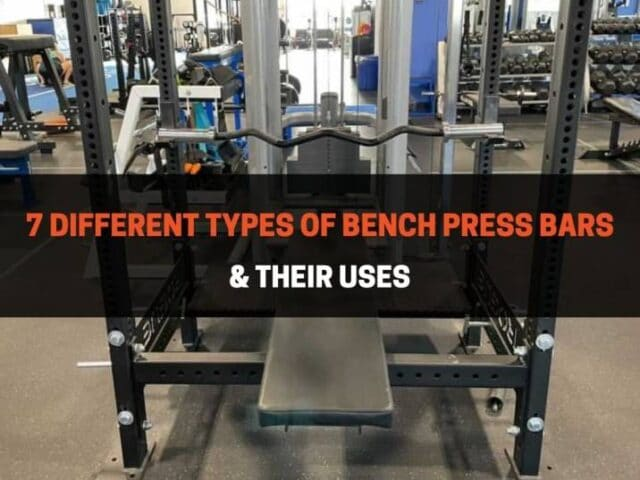 7 Different Types of Bench Press Bars & Their Uses