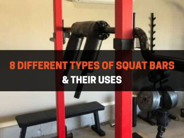 8 Different Types of Squat Bars & Their Uses