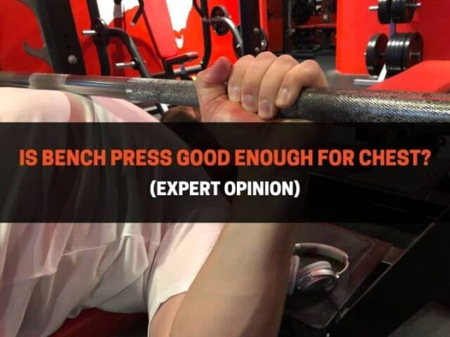 Is Bench Press Good Enough For Chest? (Expert Opinion)