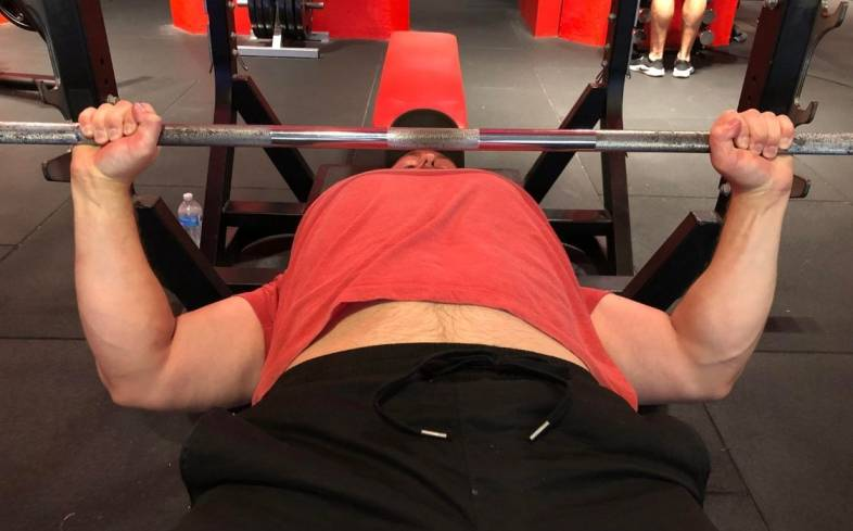 role of the pecs in the bench press