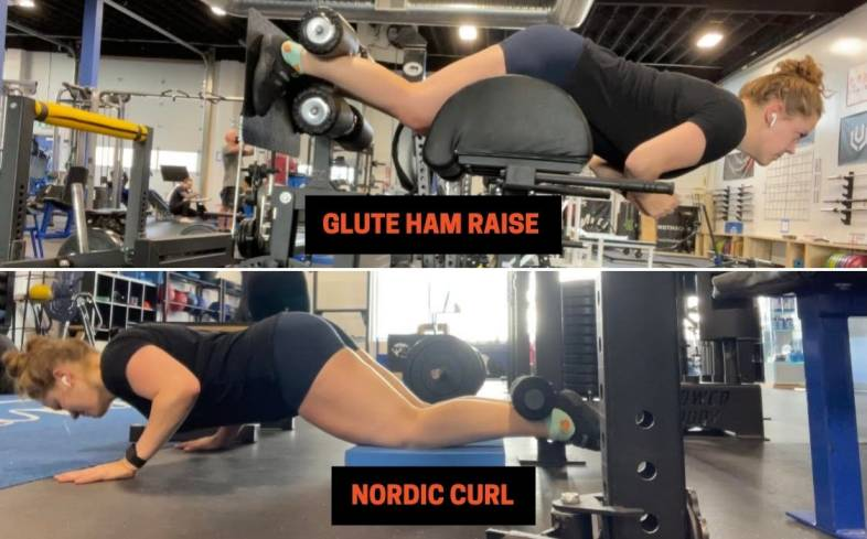 muscles used in glute ham raise vs nordic curl