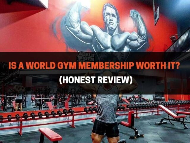 Is A World Gym Membership Worth It? (Honest Review)