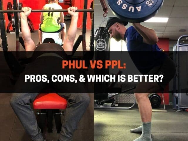 PHUL vs PPL: Pros, Cons, & Which Is Better?